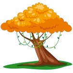 Stickers Arbre Orange